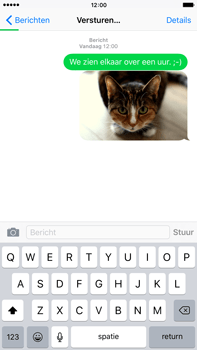Apple iPhone 6 Plus iOS 9 - MMS - Afbeeldingen verzenden - Stap 13