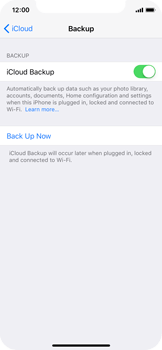 Apple iPhone X - Device maintenance - Create a backup of your data - Step 11