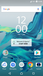 Sony F8331 Xperia XZ - Internet - Enable or disable - Step 1