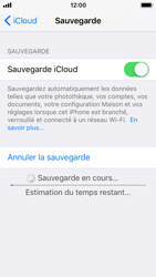 Apple iPhone SE - iOS 11 - Device maintenance - Back up - Étape 15