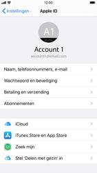 Apple iphone-7-met-ios-13-model-a1778 - Instellingen aanpassen - Back-up maken in je account - Stap 19