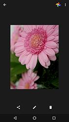 LG Google Nexus 5X (H791F) - Funciones básicas - Uso de la camára - Paso 16
