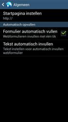 Samsung G386F Galaxy Core LTE - Internet - Handmatig instellen - Stap 24