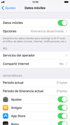 Apple iPhone 6 - iOS 11 - Internet - Ver uso de datos - Paso 4