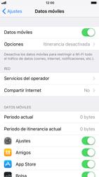Apple iPhone 6s - iOS 11 - Internet - Ver uso de datos - Paso 4