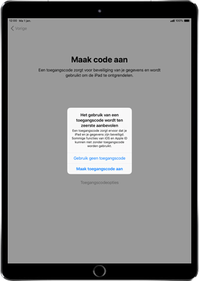 Apple ipad-mini-4-met-ios-12-model-a1550 - Instellingen aanpassen - Activeer het toestel en herstel jouw iCloud-data - Stap 15