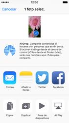 Apple iPhone SE - Funciones básicas - Uso de la camára - Paso 10