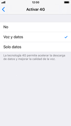 Apple iPhone SE iOS 11 - Red - Seleccionar el tipo de red - Paso 6