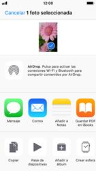 Apple iPhone SE iOS 11 - Funciones básicas - Uso de la camára - Paso 11