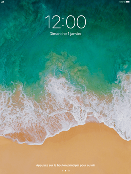 Apple iPad Mini 4 - iOS 11 - Device maintenance - Effectuer une réinitialisation logicielle - Étape 4