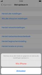 Apple iphone-7-met-ios-13-model-a1778 - Instellingen aanpassen - Fabrieksinstellingen terugzetten - Stap 6
