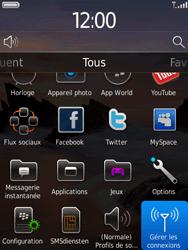 BlackBerry 9800 Torch - Réseau - Utilisation à l