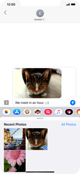 Apple iPhone 11 Pro Max - MMS - Sending a picture message - Step 14