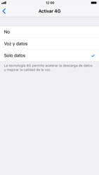 Apple iPhone 6 - iOS 11 - Red - Seleccionar el tipo de red - Paso 6