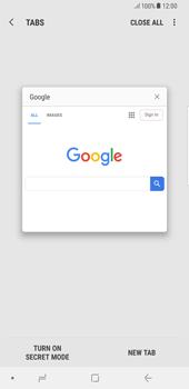 Samsung Galaxy S8 Plus - Android Oreo - Internet - Internet browsing - Step 13