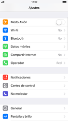 Apple iPhone 6 - iOS 11 - Internet - Ver uso de datos - Paso 3