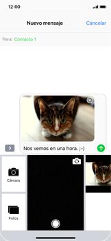 Apple iPhone X - Mensajería - Escribir y enviar un mensaje multimedia - Paso 15