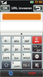 LG GD880 Mini - Internet - Hoe te internetten - Stap 15