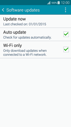 Samsung A300FU Galaxy A3 - Device - Software update - Step 7
