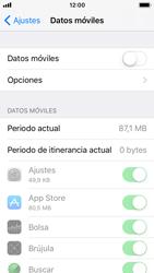 Apple iPhone 5s - iOS 11 - Internet - Activar o desactivar la conexión de datos - Paso 5
