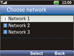 LG C360 Golf - Network - Usage across the border - Step 9