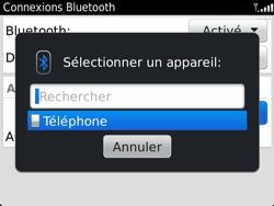 BlackBerry 9360 Curve - Bluetooth - Jumeler avec un appareil - Étape 9
