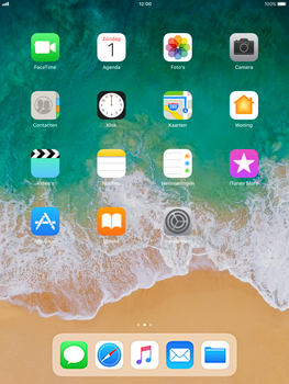 Apple iPad Pro 9.7 - iOS 11 - Buitenland - Bellen, sms en internet - Stap 1