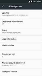 Alcatel Shine Lite - Network - Installing software updates - Step 6