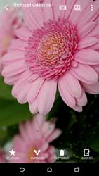 HTC Desire 816 - Photos, vidéos, musique - Prendre une photo - Étape 16