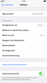Apple iPhone 6 Plus - iOS 11 - Bellen - Bellen via wifi (VoWifi) - Stap 4