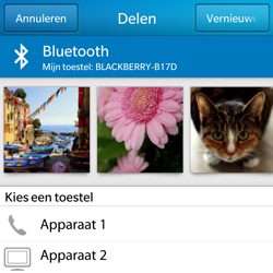 BlackBerry Q5 - Contacten en data - Foto