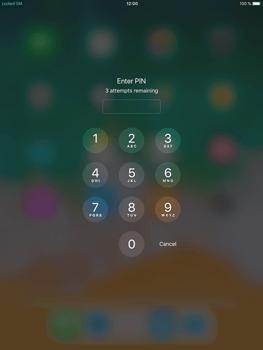 Apple iPad Mini 4 - iOS 11 - Internet - Manual configuration - Step 16