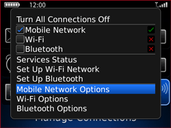 BlackBerry 9700 Bold - Internet - Enable or disable - Step 4