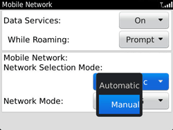 BlackBerry 9790 Bold - Network - Usage across the border - Step 6