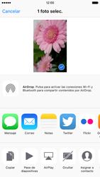 Apple iPhone 6s iOS 9 - Funciones básicas - Uso de la camára - Paso 9