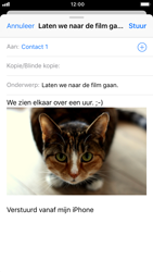 Apple iPhone 8 - iOS 12 - E-mail - Bericht met attachment versturen - Stap 14