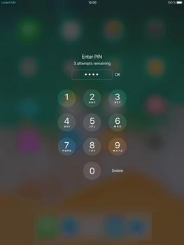 Apple iPad Mini 4 - iOS 11 - Internet - Manual configuration - Step 17