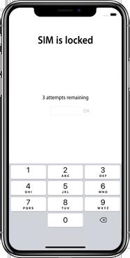 Apple iphone-xs-max-met-ios-13-model-a1921 - Instellingen aanpassen - Hoe gebruik ik de Automatisch inloggen-optie - Stap 4