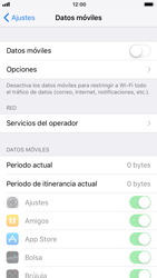Apple iPhone 6 - iOS 11 - Internet - Activar o desactivar la conexión de datos - Paso 5
