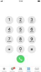 Apple iPhone 8 - iOS 12 - Chamadas - Como bloquear chamadas de um número específico - Etapa 3