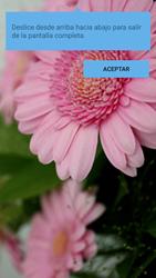 Sony Xperia M5 (E5603) - Funciones básicas - Uso de la camára - Paso 14