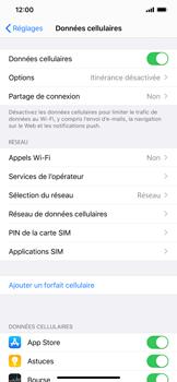 Apple iPhone 11 Pro Max - Internet - activer ou désactiver - Étape 4