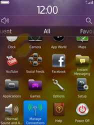 BlackBerry 9810 Torch - Network - Usage across the border - Step 3