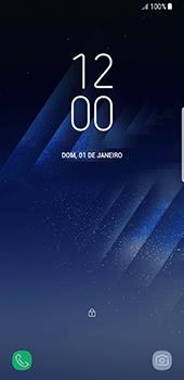 Samsung Galaxy S8 - Internet (APN) - Como configurar a internet do seu aparelho (APN Nextel) - Etapa 33