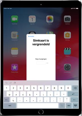 Apple iPad Air 2 - iOS 11 - Instellingen aanpassen - Hoe gebruik ik de Automatisch inloggen-optie - Stap 23