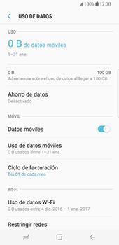 Samsung Galaxy S8 - Internet - Activar o desactivar la conexión de datos - Paso 6
