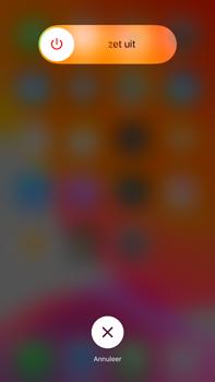Apple iphone-6s-plus-met-ios-13-model-a1687 - Internet - Handmatig instellen - Stap 10