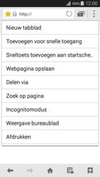 Samsung A300FU Galaxy A3 - Internet - hoe te internetten - Stap 15