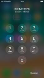 Apple iPhone 7 iOS 11 - Mensajería - Configurar el equipo para mensajes multimedia - Paso 16