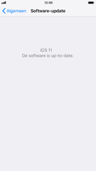 Apple iPhone 6s - iOS 11 - software - update installeren zonder pc - stap 6
